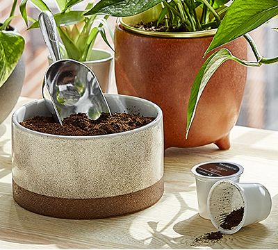 EARTH DAY TIPS: 10 INNOVATIVE WAYS TO REUSE COFFEE GROUNDS