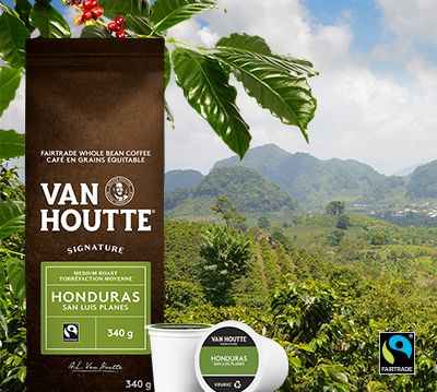 Van Houtte® and Fairtrade Coffee: A 20-Year Sustainable Relationship