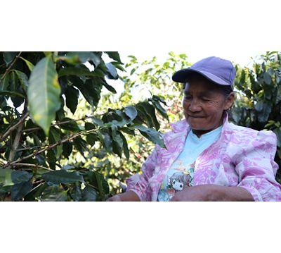 A Honduran coffee with (very) unique origins